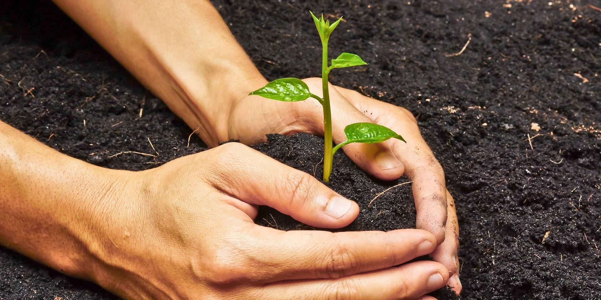 CSR & Sustainability